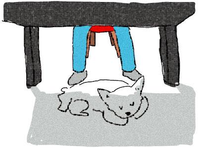 仕事している足下で犬が寝てる