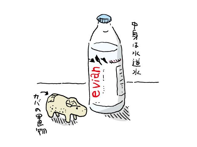 夏場の水分補給